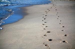 How do I walk with God?